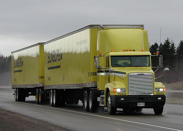 3902/1233173958-nb_govt_pick_of_lcv_truck.jpg